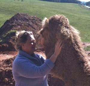 Animal Mentors Camel