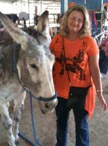 Animal Mentors Donkey